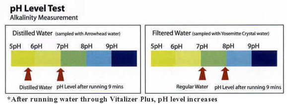 Vitalizer Plus pH